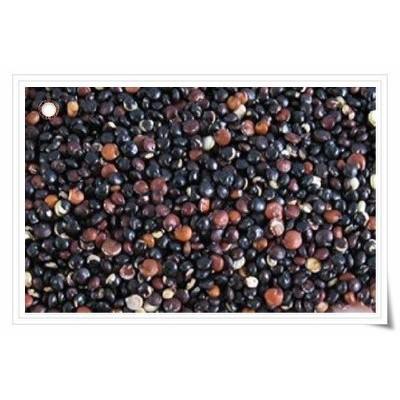 600g 南美洲 黑藜麥國外有機 藜麥Organic Quinoa 印加麥黑黎麥黑色