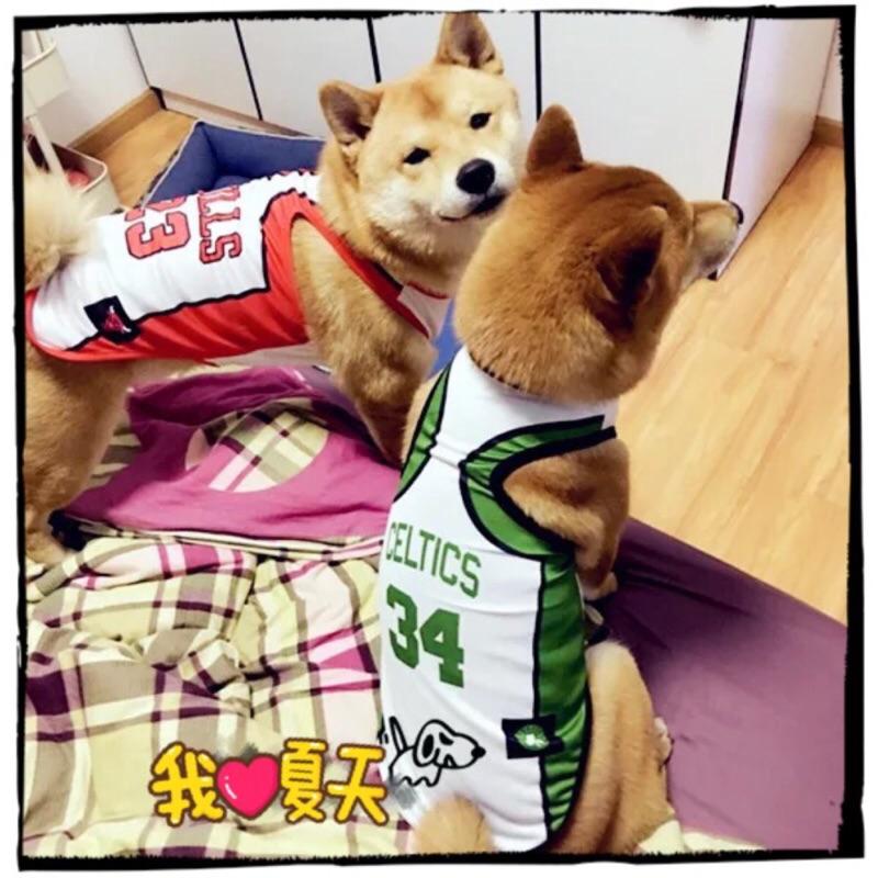 ۞芙芙遊樂園۞( )NBA 潮流球衣寵物狗狗衣服夏款背心網眼透氣籃球衣 背心公牛、騎士、湖