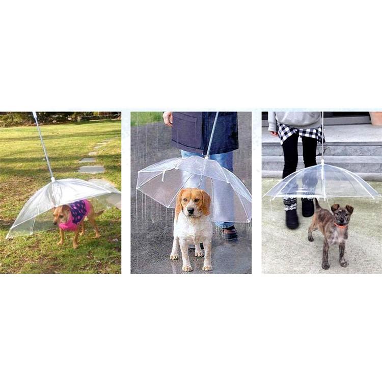 【寵物 透明雨傘】附鍊子寵物雨傘下雨天溜狗雨傘溜狗傘狗雨傘貓雨傘寵物牽引雨傘PVC 牽引傘