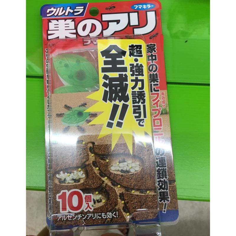 JP   earth 強效型效果佳紅螞蟻黑螞蟻10 入組