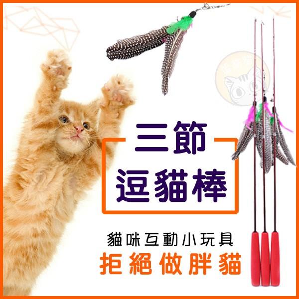 ~躲貓貓~三段伸縮逗貓棒大鳥逗貓棒可替換羽毛頭釣竿式超彈力逗貓杆貓玩具