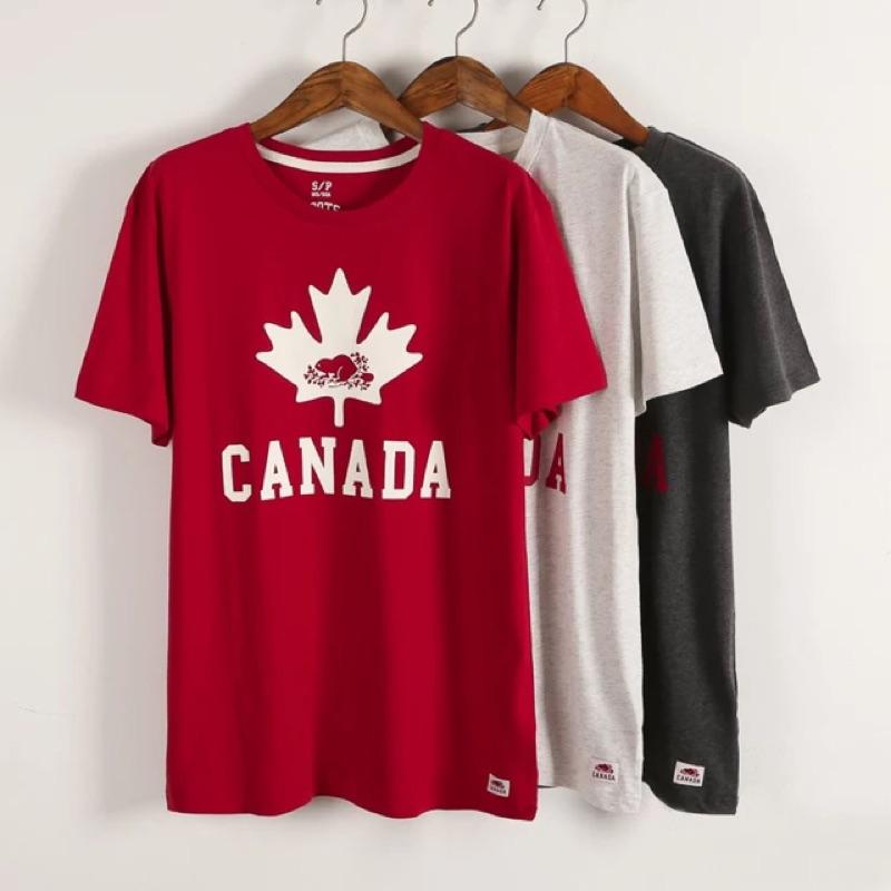Roots 加拿大國慶款男款楓葉圓領短袖T 恤