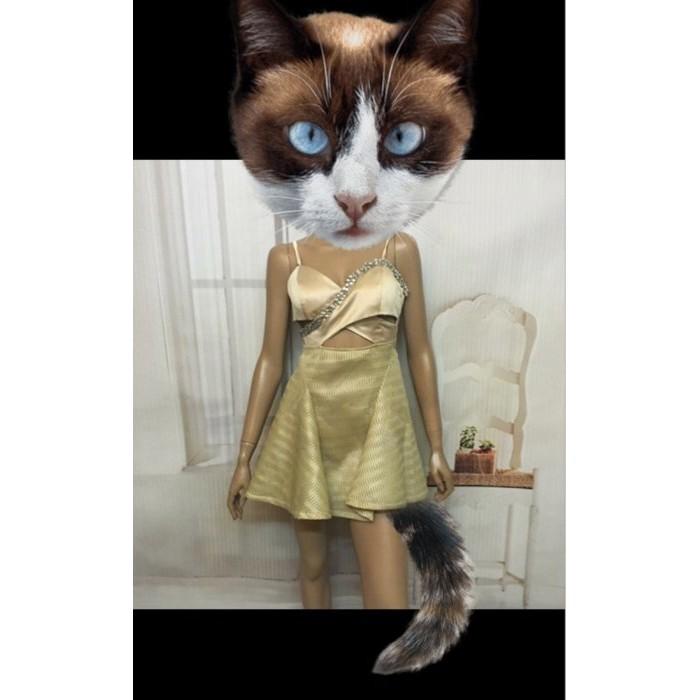 正韓貨㊣優雅香檳金緞面亮鑽交叉露腰小洋裝小禮服