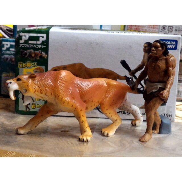 謝絕 盒損內 TAKARA TOMY アニア多美動物園ANIA 探索動物AL 02 三角龍
