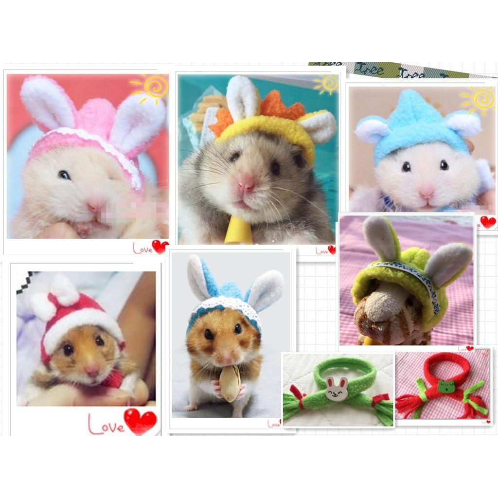 倉鼠拍照衣服帽子背包金絲熊松鼠豚鼠刺猬連帽t 恤可愛超萌服裝龍貓刺猬松鼠荷蘭豬熊