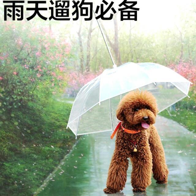 寵物用品狗狗雨傘外出用品遛狗雨傘雨衣小型犬