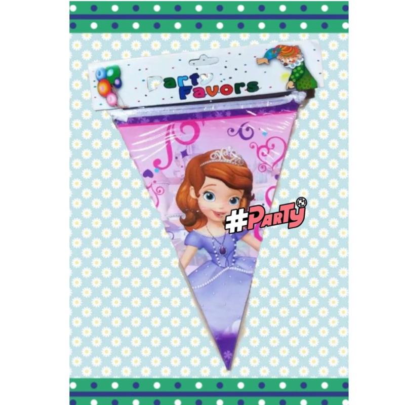 環保生日三角旗拉旗小公主蘇菲亞Kitty 維尼米奇蜘蛛人麥坤多款 派對會場佈置12 面3