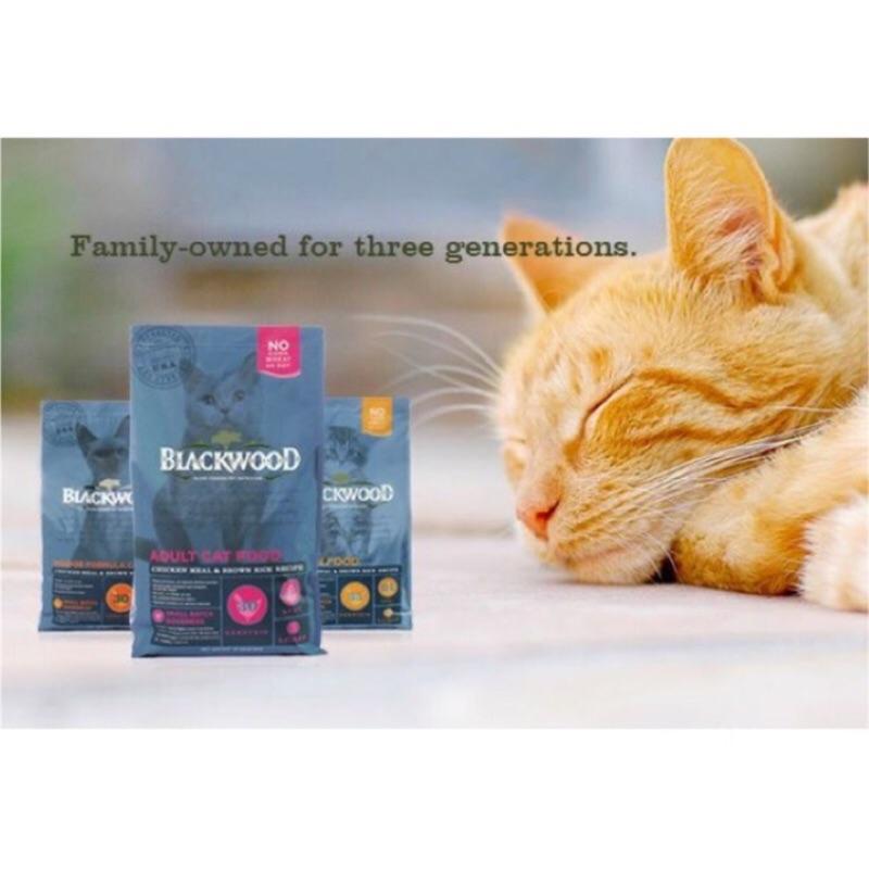 ۞芙芙遊樂園۞加價購區)BLACKWOOD 柏萊富特調幼貓成貓全齡貓1LB 1 磅450G