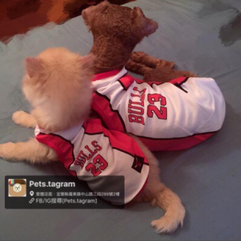 Pets tagram 超潮der 小狗大狗尺寸都有寵物球衣喬丹款