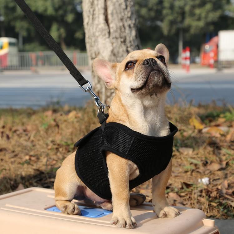 狗狗牽引胸背套大中小型犬網布胸背帶泰迪狗繩遛狗繩透氣背心網布寵物胸背帶