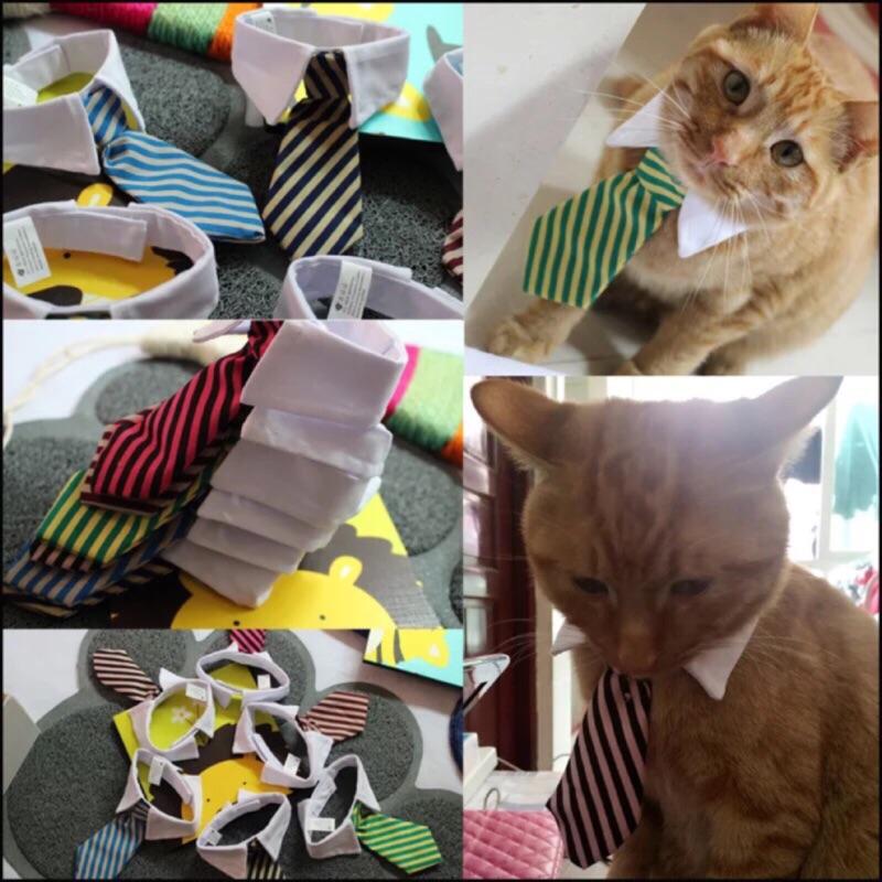 ۞芙芙遊樂園۞( )霸道總裁寵物領帶狗狗貓咪角色扮演領帶襯衫領魔鬼氈條紋領結假領領帶婚禮新