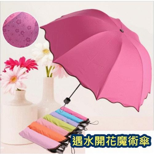韓國 遇水開花魔術傘黑膠防曬抗UV 洋傘折傘晴雨傘遮陽傘荷葉邊公主傘遇水開花雨傘