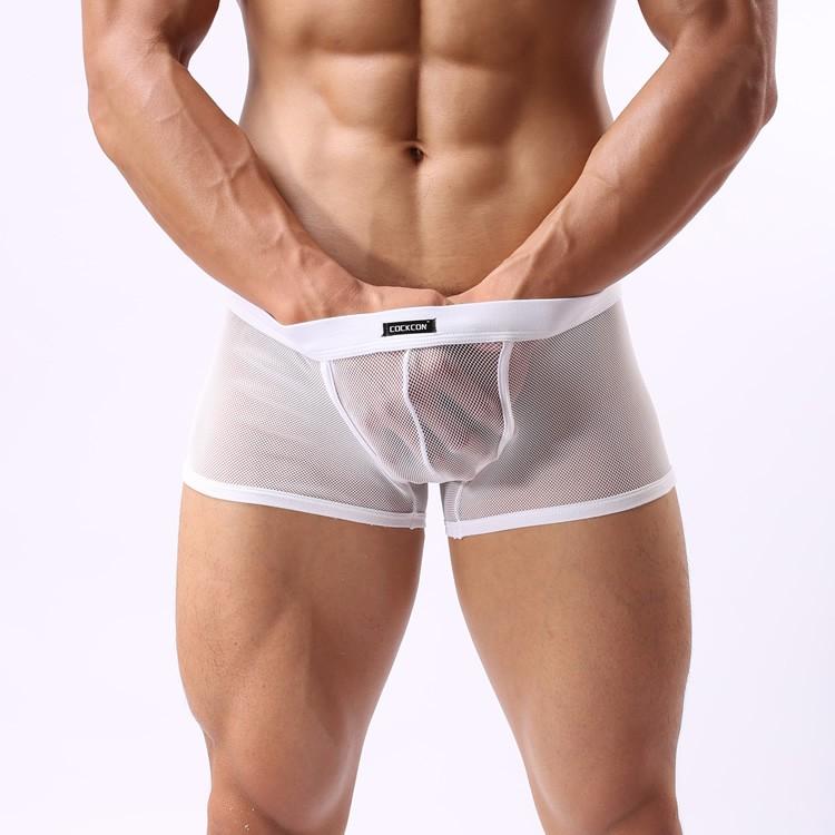 E0075 多色 ~均碼~性感男士內褲平角褲網眼全透明誘惑jj 低腰透氣女士最愛