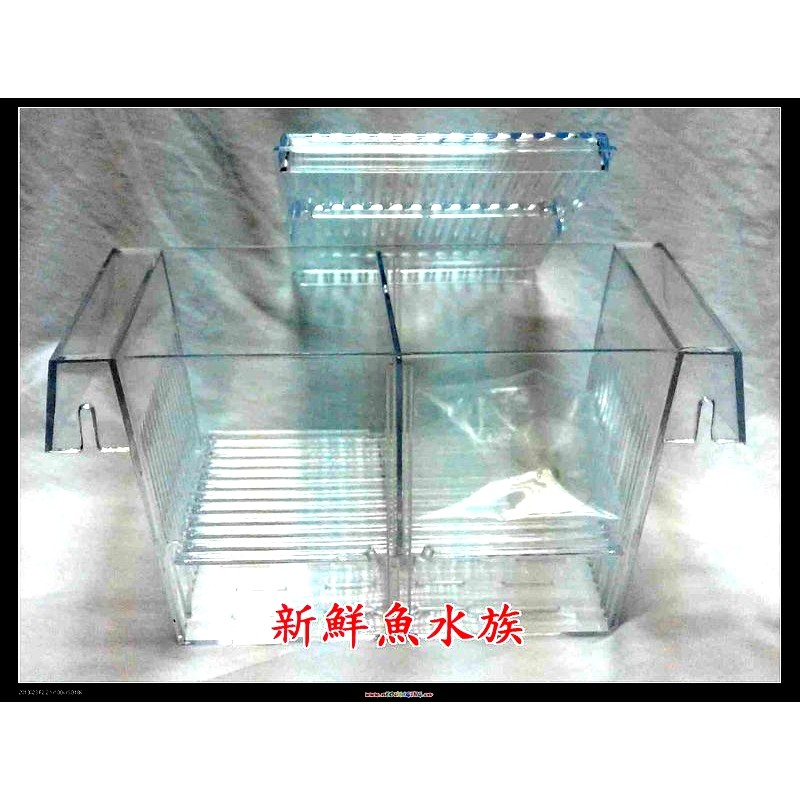 新鮮魚水族館 店面孔雀紅球隔離盒繁殖盒產子盒L 約20 5 10 10cm