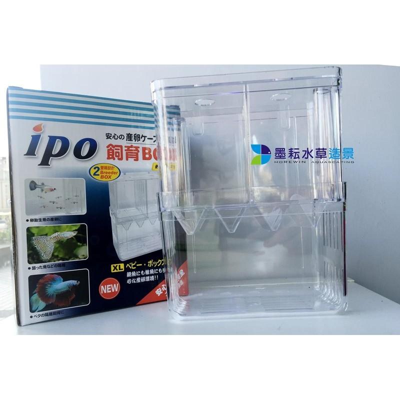 ipo 飼育繁殖盒XL 自浮式多 隔離盒1 個240 元墨耘水草造景