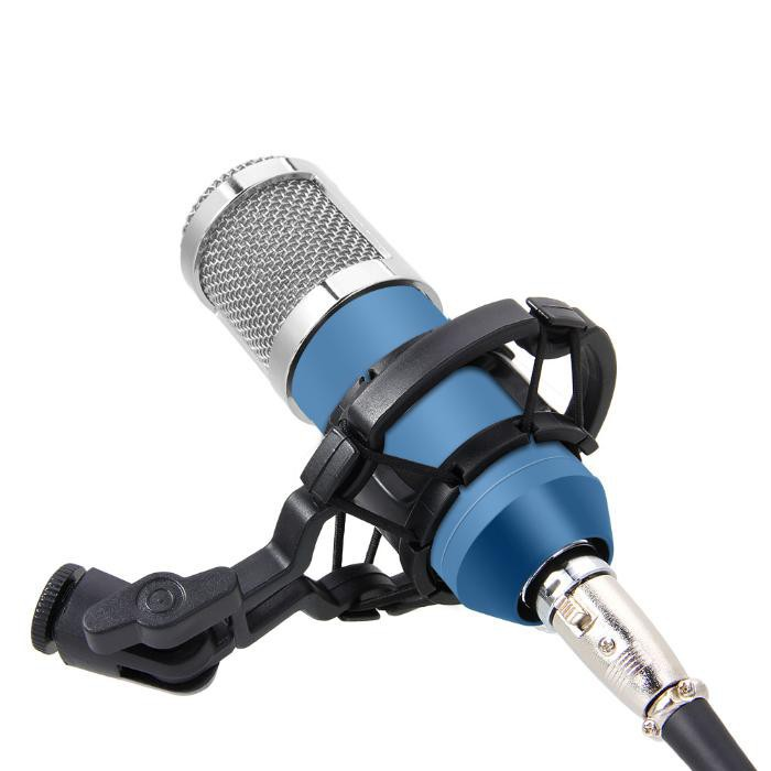 BM 800 電容記錄麥克風