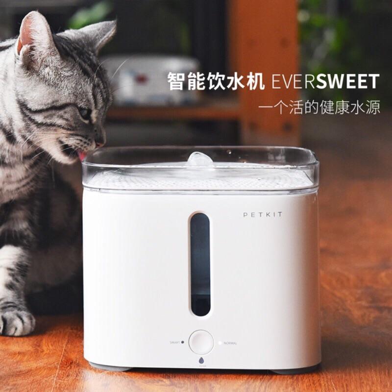 ✨ ✨小佩寵物智能飲水機、自動循環貓咪狗狗飲水器、寵物活水機