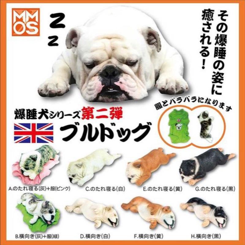爆睡犬2 英國鬥牛犬xmmos 爆睡犬睡眠動物盒玩轉蛋扭蛋爆睡犬英鬥