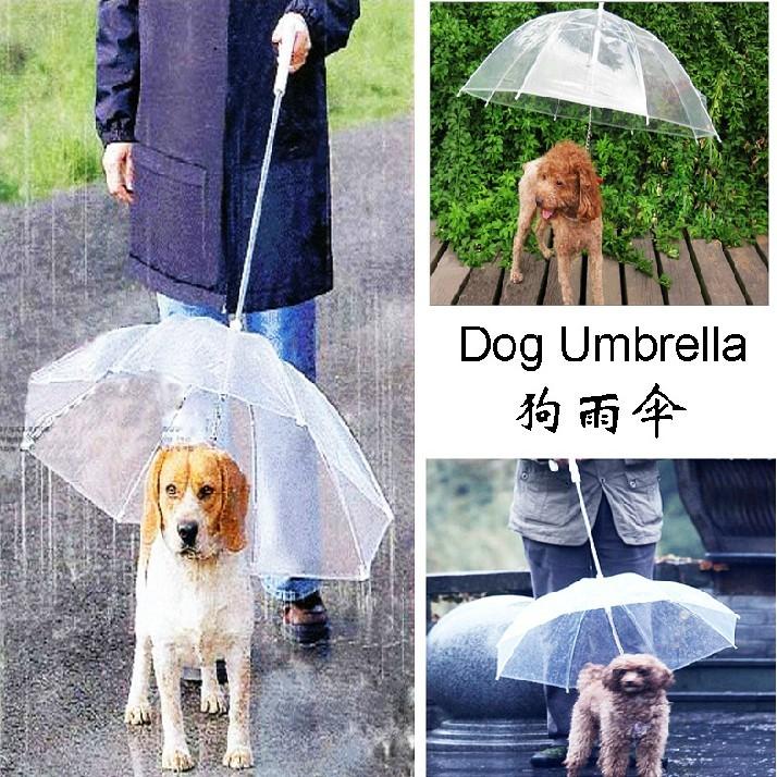 寵物狗狗雨傘狗狗雨傘寵物雨傘小型犬小狗寵物雨衣雨披用品帶狗鏈子K