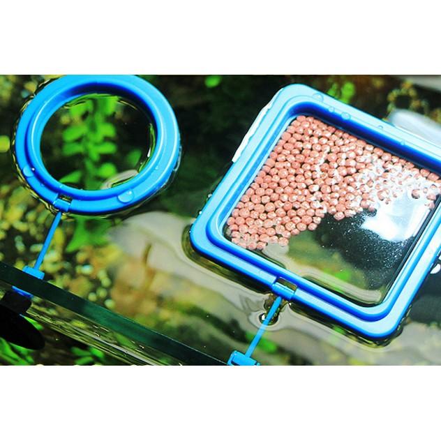 ~新巢 ~自動喂食器喂食圈熱帶孔雀魚投食圈水族魚缸魚食魚糧魚飼料投喂器