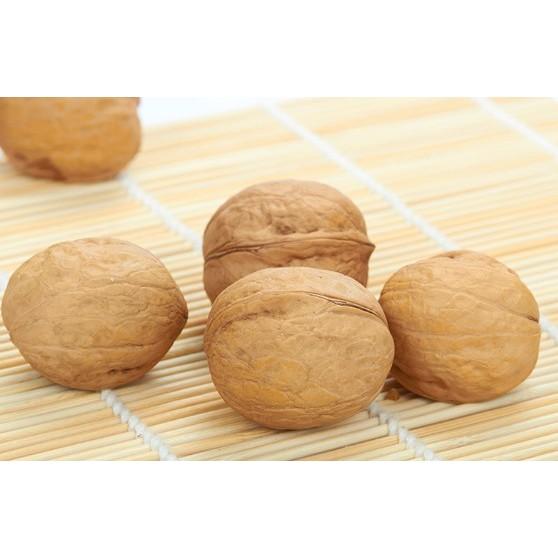 高 原味低溫烘焙天然核果人可食用等級的薄皮核桃堅果鳥零食