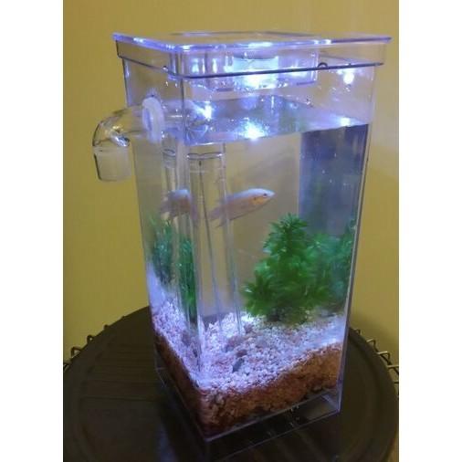 ~鑫巢~My Fun Fish 懶人魚缸自動換水辦公室小魚缸 魚缸孔雀魚缸生態缸水族箱換水