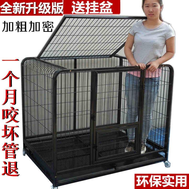 ~寵愛有家~大型犬金毛薩摩阿拉斯加犬籠寵物狗籠送不銹鋼狗盆125 95 110