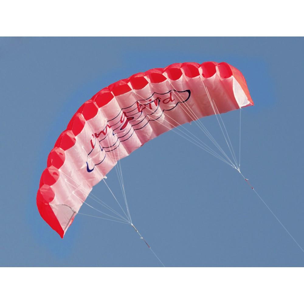 戶外 雙線特技翼傘風箏