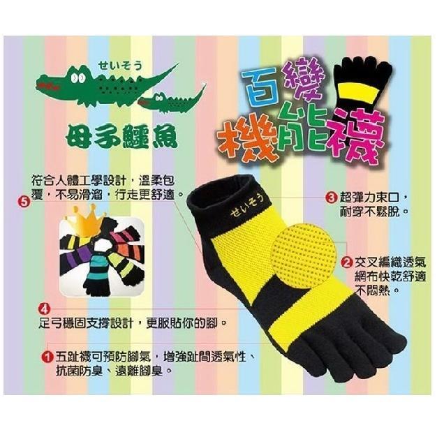 蝦皮 ~小茜鞋坊~母子鱷魚百變機能襪七彩五指襪亮麗登場可 氣墊Y 拖N30 BN58 是慢