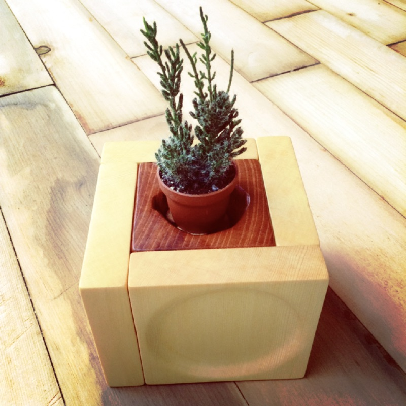 檜木盆栽杯墊組