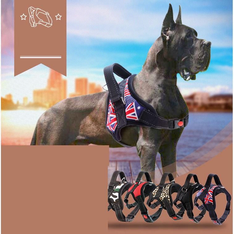 PETSTYLE 寵物用品中大型犬項圈防爆衝牽引繩寵物胸揹帶