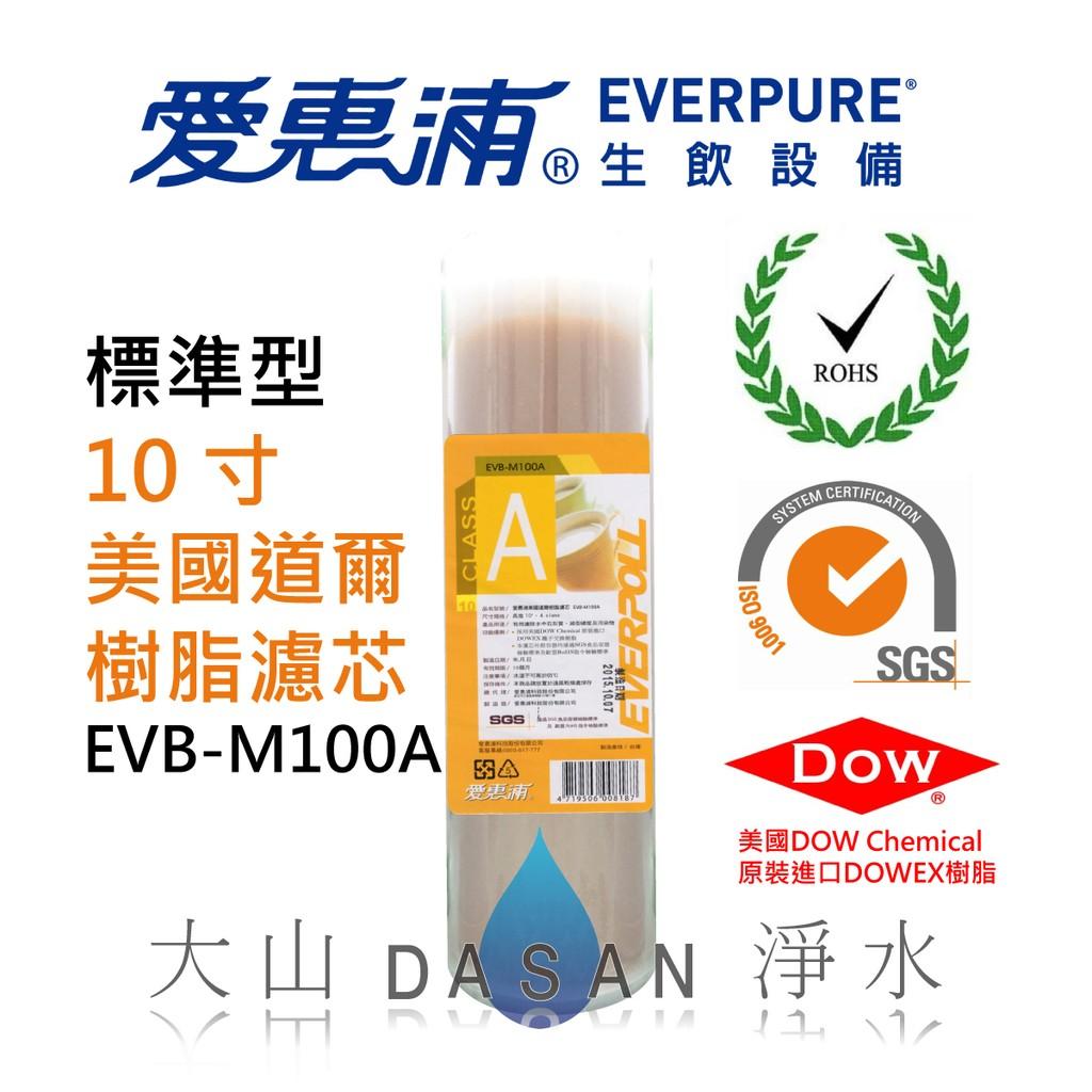 大山淨水 EVERPOLL 愛惠浦10 吋10 寸 型美國道爾樹脂濾心濾芯EVB M100