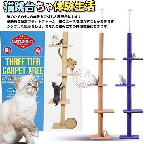dyy ~超長大型貓爬樹3way 頂天豪華貓跳台