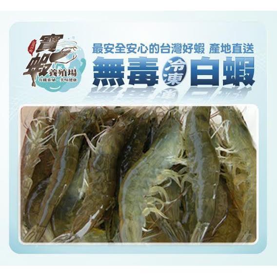 白蝦鯧魚虱目魚 寶蝦有機養殖無毒白蝦產銷履歷