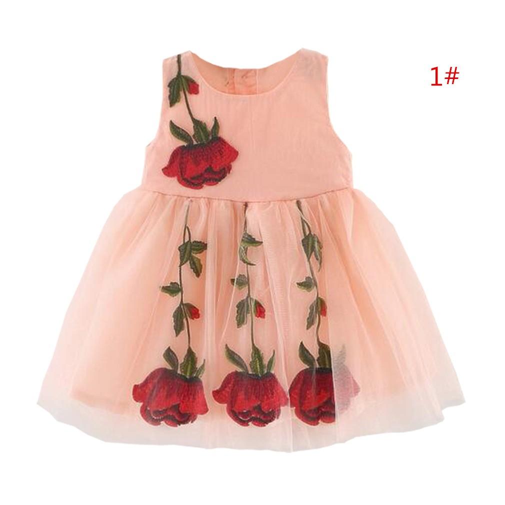 女童夏裝嬰兒 6 個月以上高檔玫瑰刺繡純棉里襯網紗連身裙洋裝