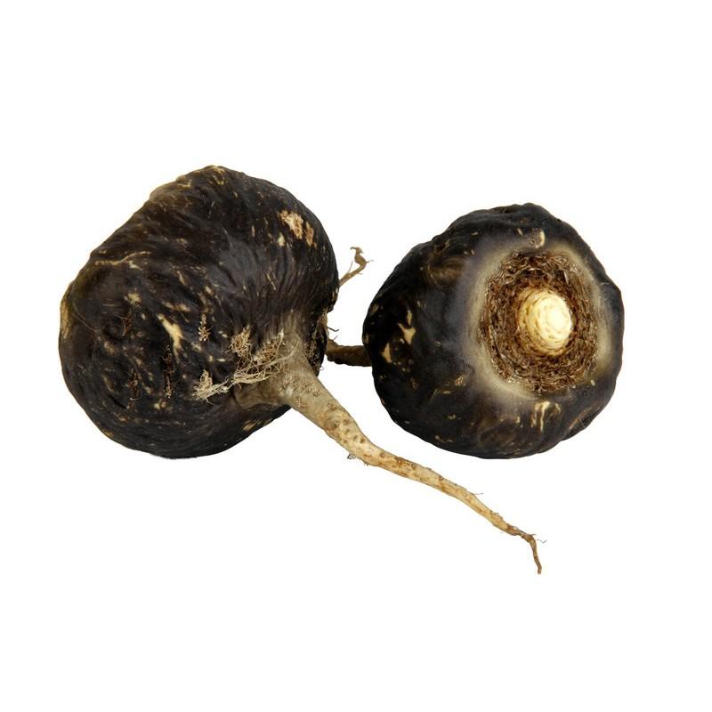 ~A jin ~Maca 黑瑪卡Lepidium meyenii (種子每份20 顆120
