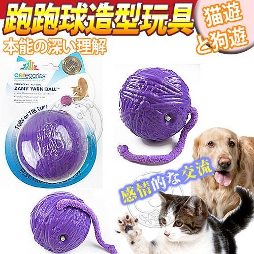 ~幸福培菓寵物~R2P 貓咪系列~貓咪跑跑球 玩具個