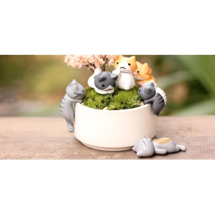 豬~~迷你招財貓公仔~一套6 隻貓咪微景觀擺飾拍照道具貓裝飾貓佈景水族箱道具多肉植物裝飾苔