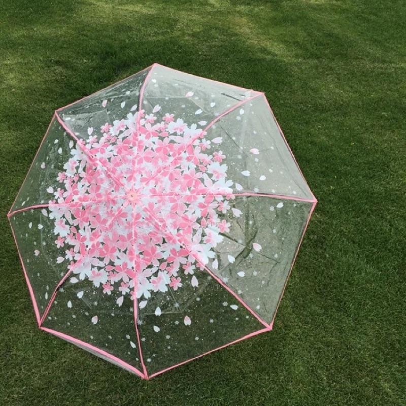 櫻花雨傘晴雨傘透明折疊三折雨傘