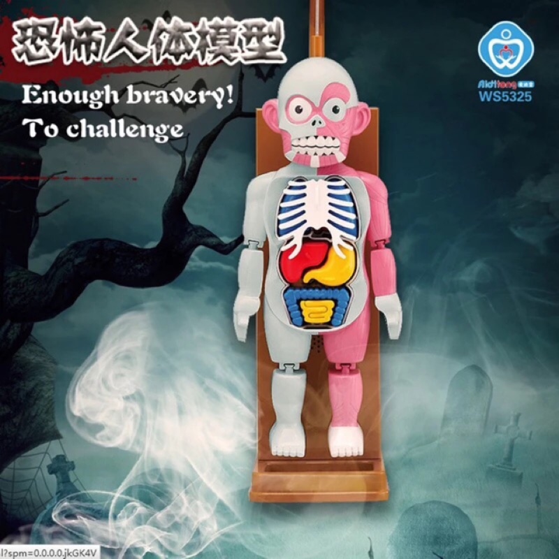 中文版 正品爆款學校怪談驚嚇人體模型玩具桌遊器官認知遊戲