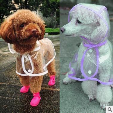 外出 ~超萌狗狗透明雨衣~寵物雨衣
