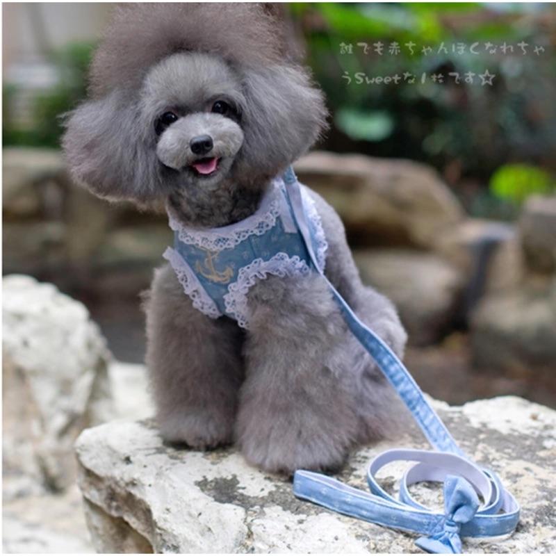 PetFace 寵物臉寵物牛仔胸背帶牽引繩套裝蕾絲衣服胸帶狗狗衣服貴賓柴犬博美