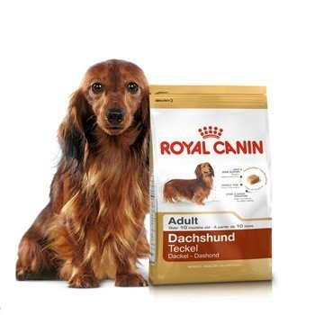 法國皇家臘腸飼料成犬飼料PRD28 1 5KG
