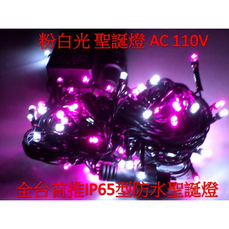 LED ~亞流仕 館~LED 聖誕燈IP65 防水10 米100 燈110V 粉紫白光可同