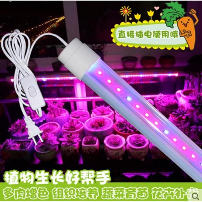 LED 植物生長補光燈溫室組培多肉花卉紅藍光合燈防水植物燈管