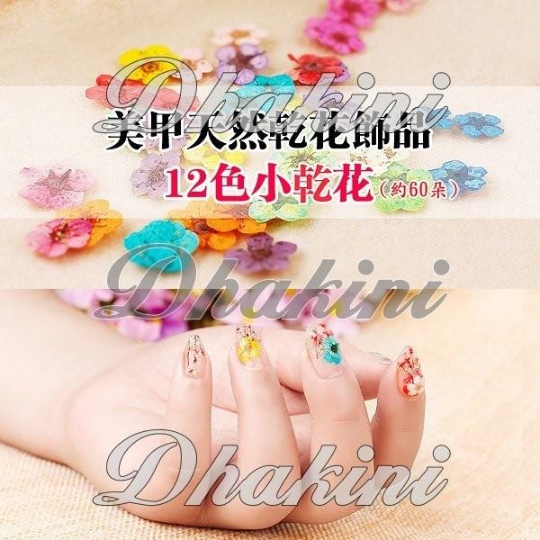 12 格盒裝乾燥花~~美甲天然乾燥花飾品約60 朵~~濃濃的春意浪漫氣息,覺得乾花美甲美嗎