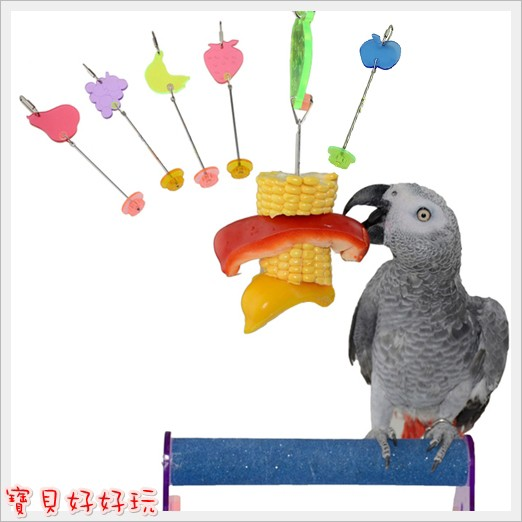 ~寶貝好好玩~~不鏽鋼蔬菜叉水果叉~飼料零食腳抓啃咬攀爬鸚鵡玩具站架鳥籠