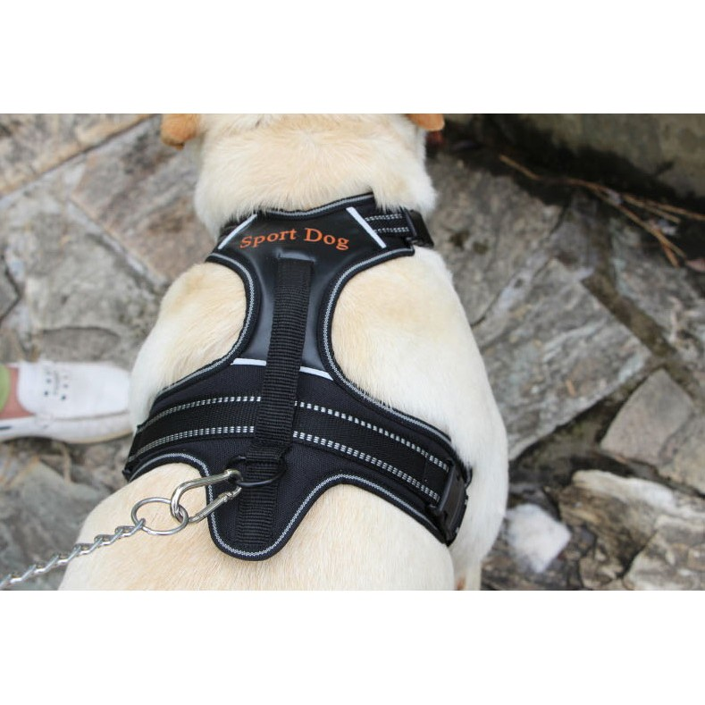 id120 SPROT DOG 胸背帶寵物背帶狗狗胸背項圈大型犬黃金拉不拉多訓練超輕