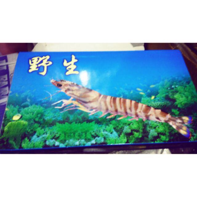 明蝦斑節蝦野生大蝦野生蝦