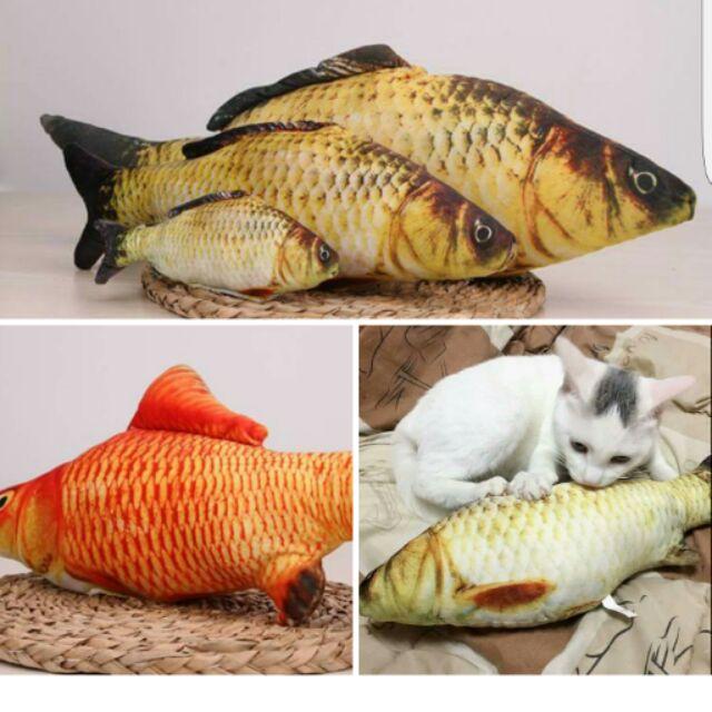 貓咪愛吃魚